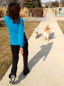 My dogs encourage me to keep moving!