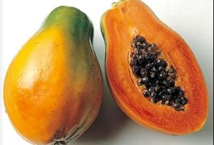 Papaya- it's poppin'!