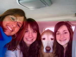 One of my favorite photos of car travel long ago with our golden, Princess!