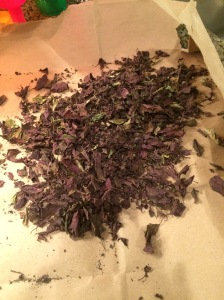 Basil all dried and ready to go!